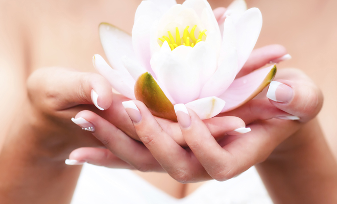 Water lily flower in woman hands